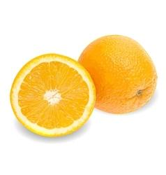 Fresh juicy orange background vector image