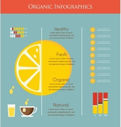Lemon and organic infographics vector image