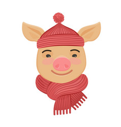little funny pig in a knitted hat and scarf vector image