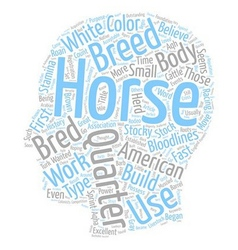 The american quarter horse text background vector