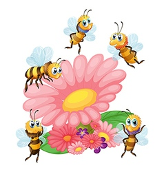 A big flower surrounded with bees vector image vector image