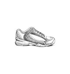 Sketch shoes vector image