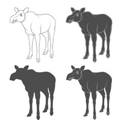 set of black and white images with a moose vector image vector image