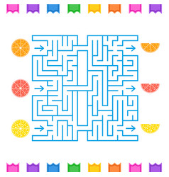 abstract colored square maze with tropical fruits vector image