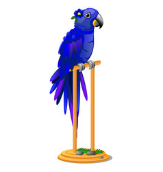 beautiful bird blue parrot sitting on a wooden vector image