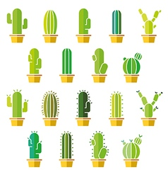 Cactus abstract flat colorful collection in vector