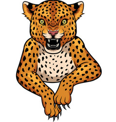 cartoon leopard mascot vector image