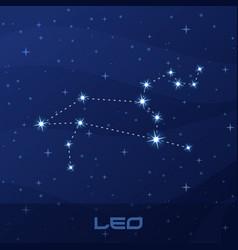 constellation leo astrological sign vector image