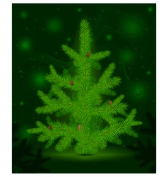 green christmas fur-tree vector image