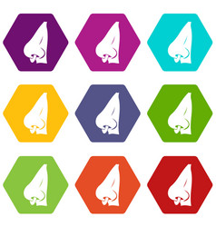 human nose with piercing icon set color hexahedron vector image