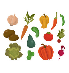 isolated cartoon vegetables vector image