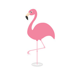Pink flamingo standing on one leg circles vector