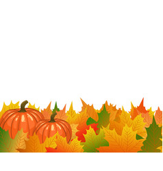autumn maple tree leaves with ripe thanksgiving vector image