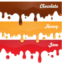 Chocolate honey jam drips on white background vector image
