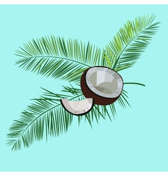 Coconut and palm leaves isolated on blue vector