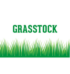 grass logo background vector image