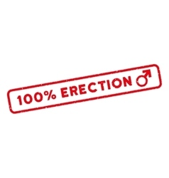 100 Percent Erection Watermark Stamp vector image