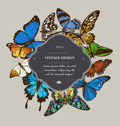 Badge over design with red lacewing african giant vector