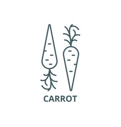 carrot line icon carrot outline sign vector image