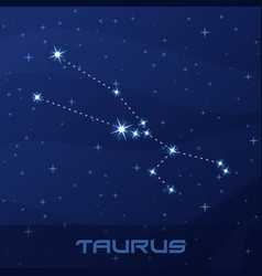 constellation taurus astrological sign vector image