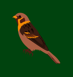 In flat style of sparrow vector