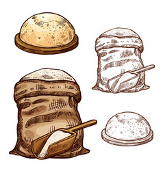 Sketch icons of baking flour bag and bread vector