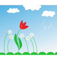 spring flowers and tulip vector image