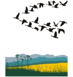 migrating geese in the spring vector image vector image