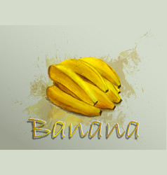 banana watercolor food vector image