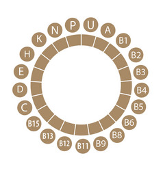 All the vitamins circular framing vector