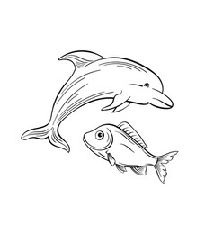 Dolphin and fish black and white vector