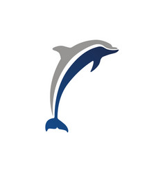 Dolphin logo isolated vector