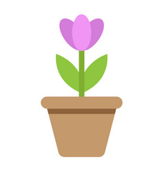 flower in pot flat icon plant and decor vector image