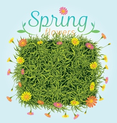 Flowers Spring Season Background vector