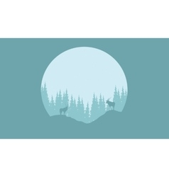 Silhouette of animal and spruce vector image