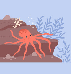 Underwater life cute and funny octopus resting vector