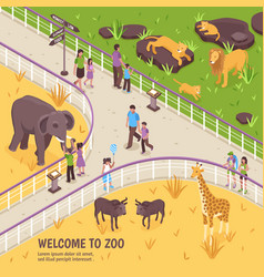 Welcome to zoo composition vector