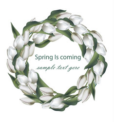 spring wreath with white tulip flowers vector image