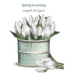 tulip flowers bouquet in a vintage vase vector image vector image
