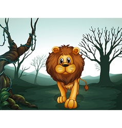 A lion in a scary forest vector image vector image