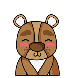 Adorable and shy bear wild animal vector