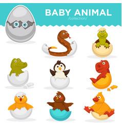 baby animals hatch eggs cartoon pets hatching vector image