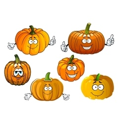 Cartoon isolated orange pumpkin vegetables vector