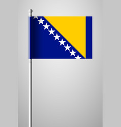 Flag of bosnia and herzegovina national flag on vector