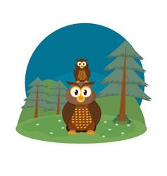 Owls cute animals cartoons vector