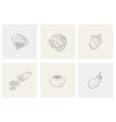 set with healthy food vegetables for print vector image