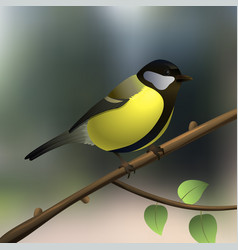 Tit yellow little bird on a tree branch in forest vector