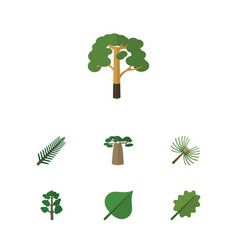 Flat icon nature set of alder hickory wood and vector