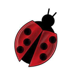 drawing bug virus error software symbol vector image