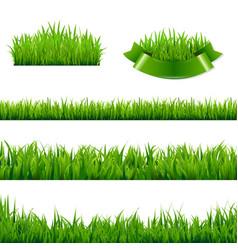 Green grass borders collection vector